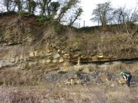 Faulting at a White Limestone quarry, Oxfordshire.