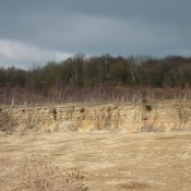 Extensive bedding planes at Breakheart Quarry, Dursley