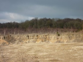 Extensive bedding planes at Breakheart Quarry, Dursley.