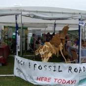 Rock & Fossil Roadshow at the Three Counties Showground, Worcestershire.