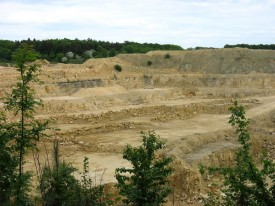 Daglingworth quarry face.