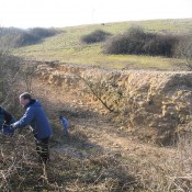 Scrub bashing at Foss Cross Quarry, Gloucestershire.