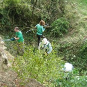 Spring clean with Oxfordshire Geology Trust.